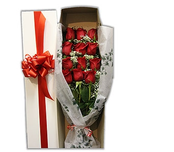 Red Roses in Ottawa ON, The Fresh Flower Company