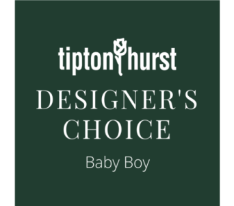 Designer's Choice Baby Boy in Little Rock AR, Tipton & Hurst, Inc.