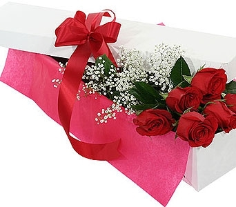 6 Red Roses- Boxed in Timmins ON, Timmins Flower Shop Inc.