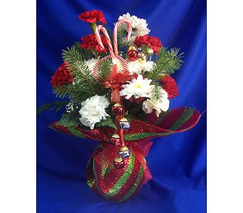 sherwood 39 s jingle bell candy cane in spring hill fl