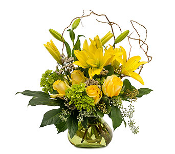 Oh Baby in Spartanburg SC, A-Arrangement Florist