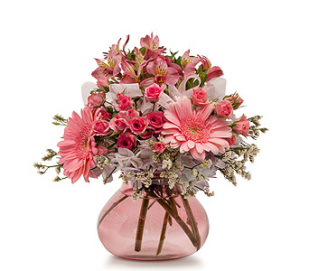 Bashful in Spartanburg SC, A-Arrangement Florist