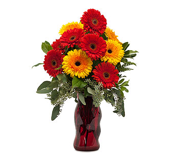 Mighty Gerberas in Charlottesville VA, A New Leaf Florist