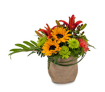Giddy Up in Raritan NJ, Angelone's Florist - 800-723-5078