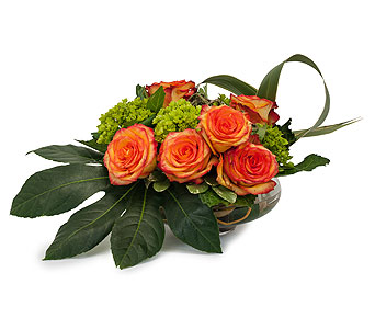 On Fire in Spartanburg SC, A-Arrangement Florist