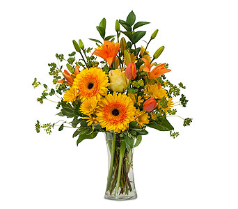 Citrus Spray in Raritan NJ, Angelone's Florist - 800-723-5078