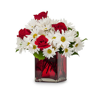 Affection in Sebring FL, Sebring Florist, Inc