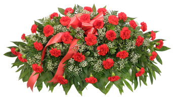 Timeless Traditions Red Carnation Casket Spray in Indianapolis IN, Steve's Flowers & Gifts