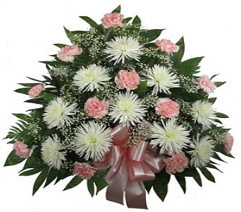 Timeless Sympathy Spray Pink in Indianapolis IN, Steve's Flowers & Gifts