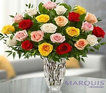 Marquis by Waterford� - Premium Assorted Roses in El Cajon CA, Conroy's