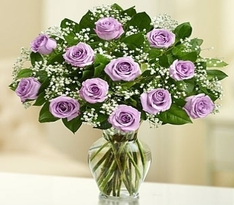 Rose Elegance� Premium Long Stem Roses - Purple in El Cajon CA, Conroy's