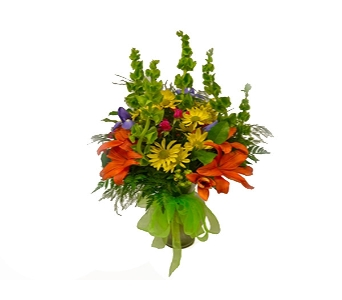VIBRANT SPLASH in send WA, Flowers To Go, Inc.