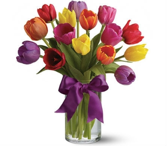Tulip Rainbow by Nature Nook� in Cleves OH, Nature Nook Florist & Wine Shop