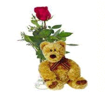 Bear Essentials in Duluth MN, Engwall Florist & Gifts