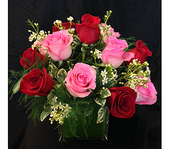 Cherry Blush Rose Cube in Dallas TX, Z's Florist