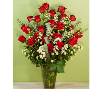 Two Dozen Red Roses with Premium Filler in Merrick NY, Feldis Florists