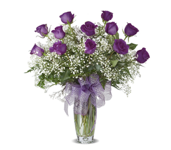 PURPLE DOZEN ROSES ARRANGED in Gainesville FL, Floral Expressions Florist