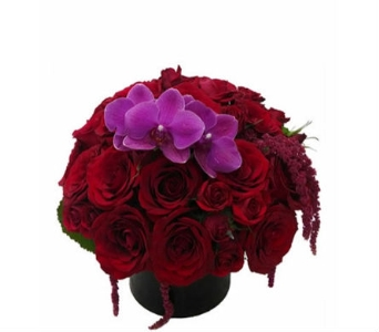 Ruby Roses in Santa Monica CA, Edelweiss Flower Boutique
