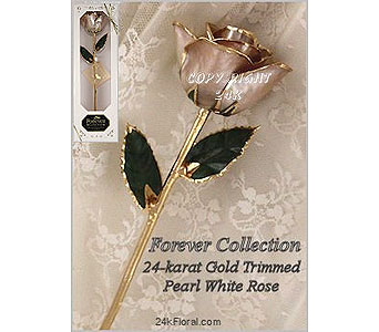 Pearl White Rose in Aston PA, Blair's Florist