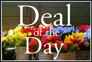 Deal of the Day  in Augusta GA, Martina's Flowers & Gifts