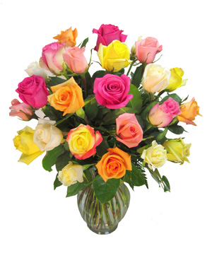 Double Dozen Rainbow Roses in Fort Myers FL, Fort Myers Florist, Inc.
