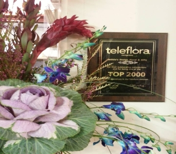 Telefloral top 2000 in Crown Point IN, Debbie's Designs