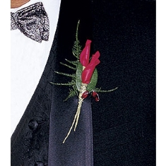 Twisted Petal Boutonniere in Camp Hill and Harrisburg PA, Pealer's Flowers