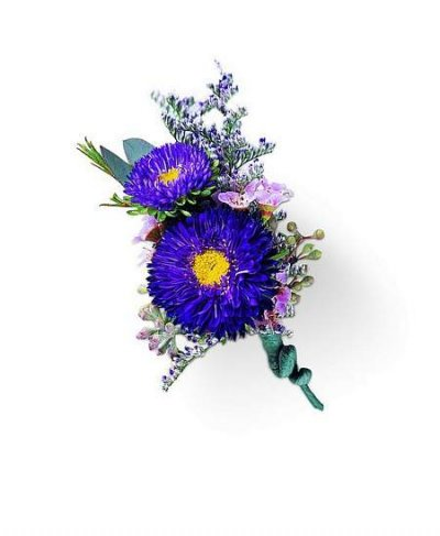 Purple Dusk Boutonniere in Camp Hill and Harrisburg PA, Pealer's Flowers
