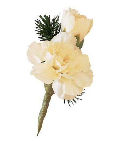 Mini Carnation Boutonniere in Camp Hill and Harrisburg PA, Pealer's Flowers