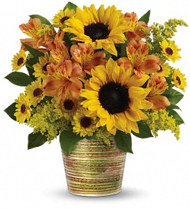 Teleflora's Grand Sunshine Bouquet in Rochester NY, Red Rose Florist & Gift Shop