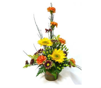 Golden Sunshine in Warren MI, Downing's Flowers & Gifts Inc.