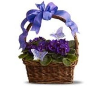 Violet Basket in Little Rock AR, Tipton & Hurst, Inc.