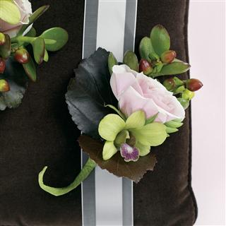 Chocolate Decadence Boutonniere in Camp Hill and Harrisburg PA, Pealer's Flowers