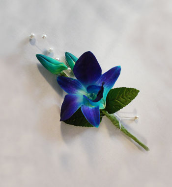 Blue Orchid Boutonniere in Camp Hill and Harrisburg PA, Pealer's Flowers