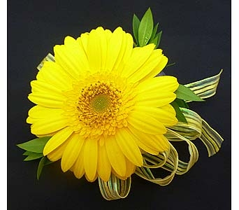 Yellow Gerbera Daisy Corsage in Mesa AZ, Watson Flower Shops