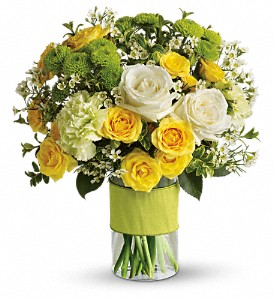 Your Sweet Smile in McLean VA, MyFlorist