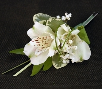 White Alstro Boutonniere in Aurora ON, Caruso & Company