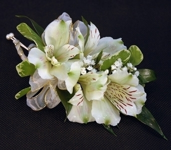 White Alstro Corsage in Aurora ON, Caruso & Company