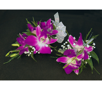 Two Tone Dendro Corsage & Boutonniere in Aurora ON, Caruso & Company