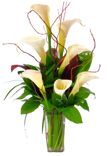 Callas Calling in Denver CO, Fairmount Floral