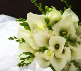 White Calla Lilies in Seattle WA, Topper's European Floral Design