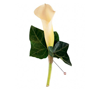 Mini Calla Boutonniere in Baltimore MD, Raimondi's Flowers & Fruit Baskets