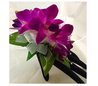 Dendrobium Orchid Corsage in Baltimore MD, Raimondi's Flowers & Fruit Baskets