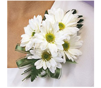 Daisy Corsage in Baltimore MD, Raimondi's Flowers & Fruit Baskets