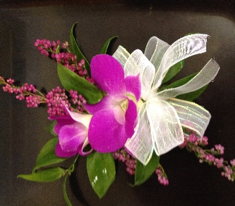 Prom Corsage- Dendrobium Orchids in Newton NC, Newton Florist