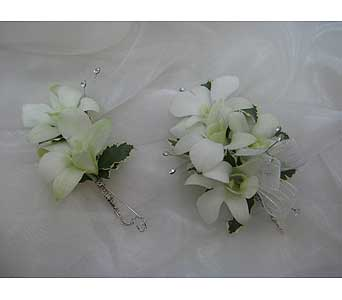 White Dendrobium Orchid Set in Brooklin ON, Brooklin Floral & Garden Shoppe Inc.