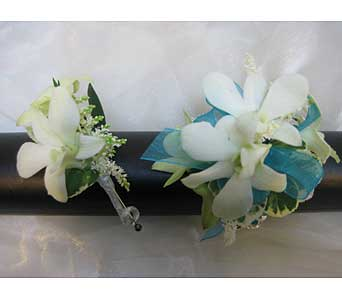 Dendrobium Orchid with Aqua Set in Brooklin ON, Brooklin Floral & Garden Shoppe Inc.