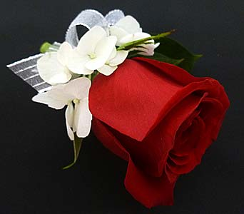 Red Rose Boutonniere in Mesa AZ, Watson Flower Shops