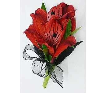 Red Alstromeria Boutonniere in Mesa AZ, Watson Flower Shops