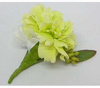Green Carnation Boutonniere in Mesa AZ, Watson Flower Shops